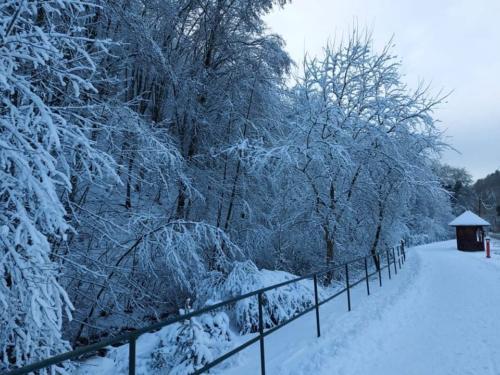 Téli séta Hollóházán